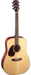 Dreadnought Left Handed Acoustic Guitars