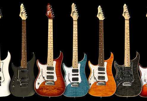 Left Handed Vigier Guitars