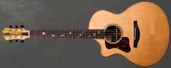 Patrick James Eggle Saluda Cutaway Left Handed Acoustic Guitar Lefty