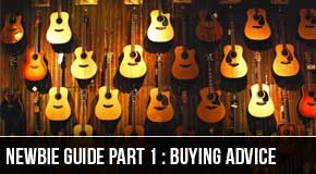Newbie Series Part1 : Buying Your 1st Guitar
