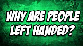 why-are-people-left-handed