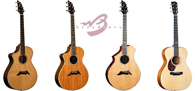 Breedlove left handed acoustic guitar lefty southpaw