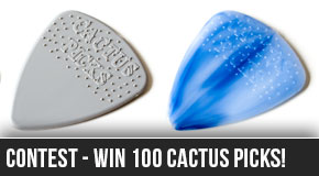 cactus-picks-competition-guitar