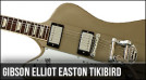 Gibson Elliot Easton Tikibird Firebird