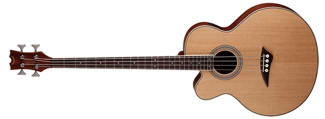 Dean Left Handed CAW Acoustic Bass